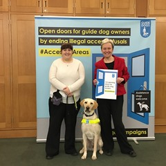 MG guide dogs